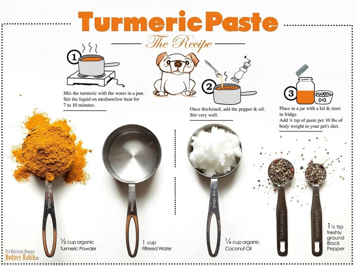 PWC Turmeric Paste for Dogs